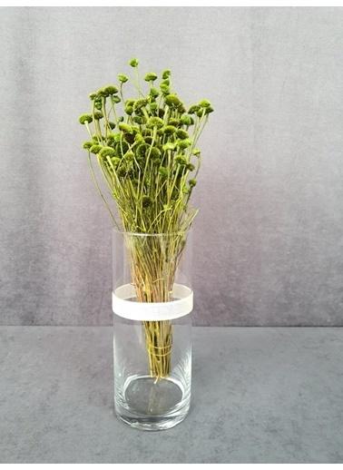 Kuru Çiçek Deposu Kuru Çiçek Papatya Otu 50 Cm Koyu Mor  Yeşil